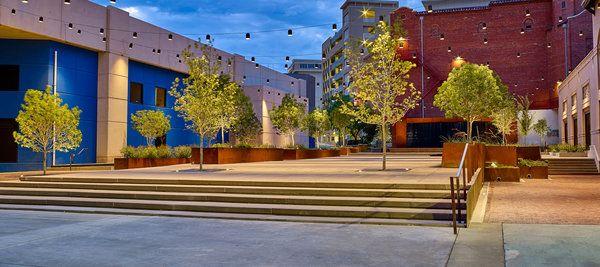 Arts plaza 13