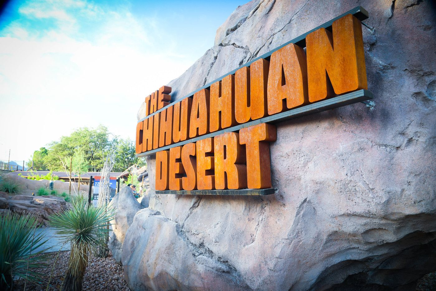 New Chihuahuan Desert exhibit at the El Paso Zoo