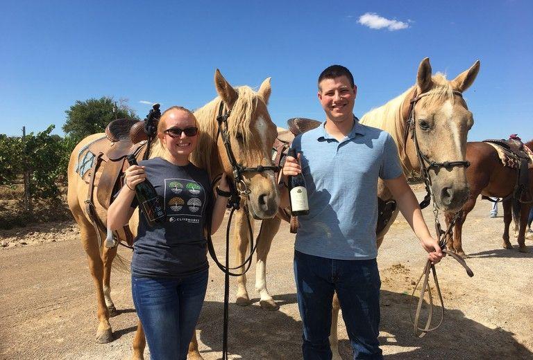 Miller Horse Farm Tours