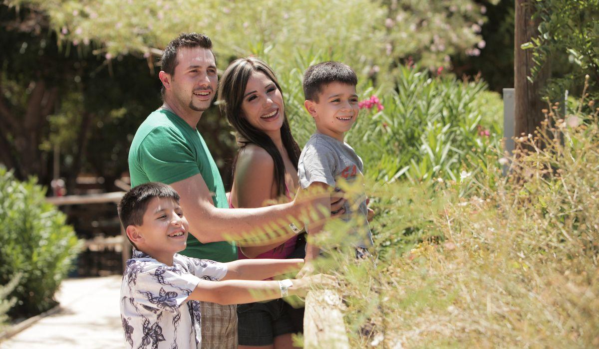 Familia zoo